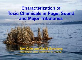 Characterization of Toxic  Chemicals in Puget Sound and Major Tributaries