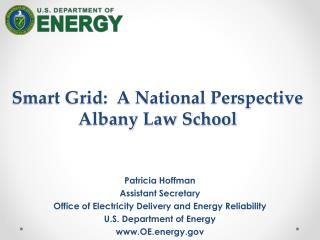 Smart Grid:  A National Perspective  Albany Law School