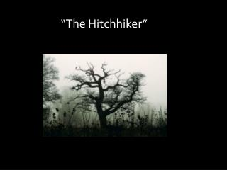"""The Hitchhiker"""