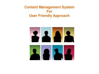 Content Management System For User Friendly Approach