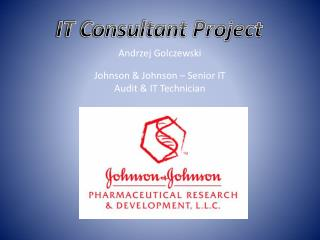 IT Consultant Project