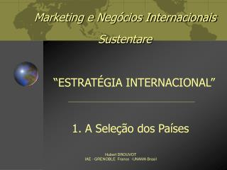Marketing e Negócios Internacionais Sustentare