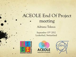 ACEOLE End Of Project meeting