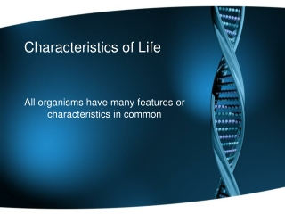 which of the following is a characteristic that distinguishes animals from animal-like protists