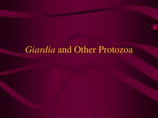 Giardia  and Other Protozoa