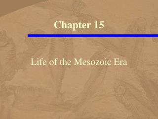 Life of the Mesozoic Era