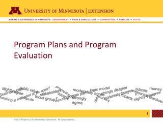 Program  P lans and Program  E valuation
