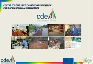 CENTRE FOR THE DEVELOPMENT OF ENTERPRISE CARIBBEAN REGIONAL FIELD OFFICE