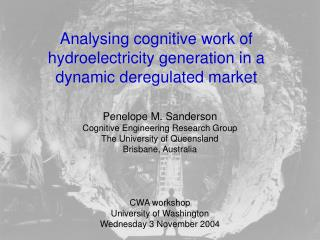Analysing cognitive work of hydroelectricity generation in a dynamic deregulated market