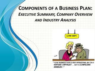 Components of a Business Plan: Executive Summary, Company Overview and Industry Analysis