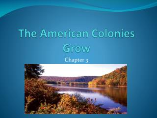 The American Colonies Grow