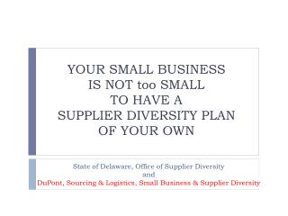 YOUR SMALL  BUSINESS  IS NOT too SMALL  TO  HAVE  A  SUPPLIER  DIVERSITY PLAN  OF  YOUR OWN