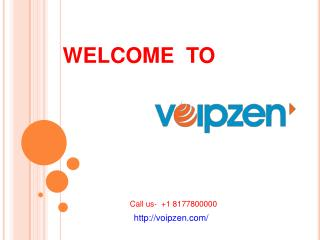 Hosted IPPBX Provider,Voip service provider