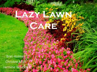 Lazy Lawn Care