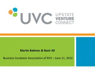 Martin Babinec & Nasir Ali Business Incubator  Association of NYS –  June 11, 2010