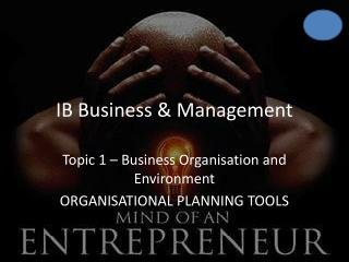 IB Business & Management