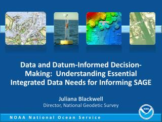 Data and Datum-Informed Decision-Making:  Understanding Essential Integrated Data Needs for Informing SAGE
