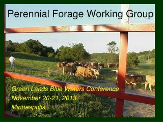 Perennial Forage Working Group