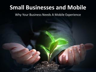 Small Businesses and Mobile