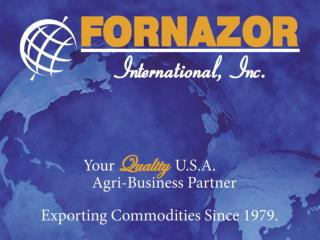 Fornazor International