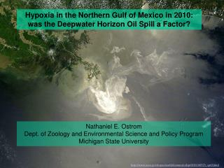 Hypoxia in the Northern Gulf of Mexico in 2010: was the Deepwater Horizon Oil Spill a Factor?
