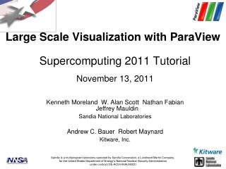 Large Scale Visualization with ParaView