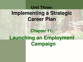Unit Three : Implementing a Strategic Career Plan