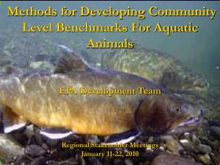 Methods for Developing Community Level Benchmarks For Aquatic Animals