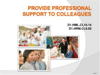PROVIDE PROFESSIONAL SUPPORT TO COLLEAGUES