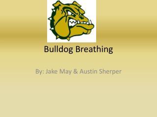 Bulldog Breathing