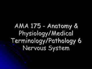 AMA 175 - Anatomy & Physiology/Medical Terminology/Pathology 6  Nervous System
