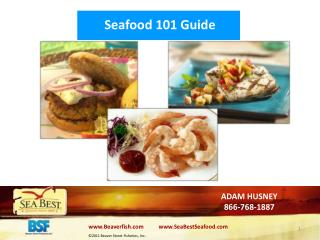 Seafood 101 Guide