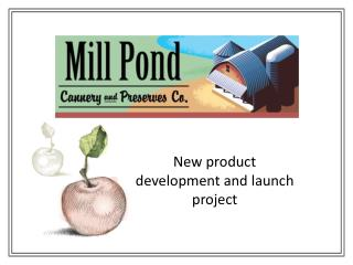 New product development and launch project