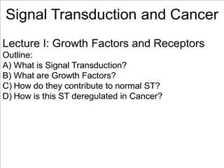 signal transduction and cancer