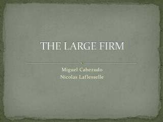 THE LARGE FIRM