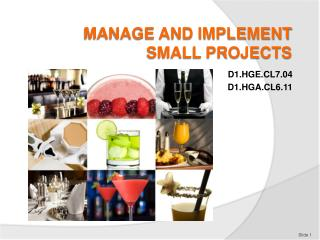 MANAGE AND IMPLEMENT SMALL PROJECTS