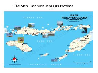 The Map  East Nusa Tenggara Province