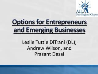 Options for Entrepreneurs and Emerging Businesses