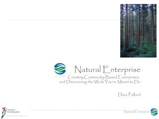 Natural Enterprise Creating Community-Based Enterprises, and Discovering the Work You're Meant to Do