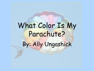 What Color Is My Parachute?