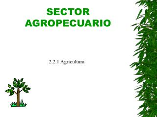 SECTOR AGROPECUARIO