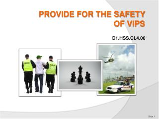 PROVIDE FOR THE SAFETY  OF VIPs