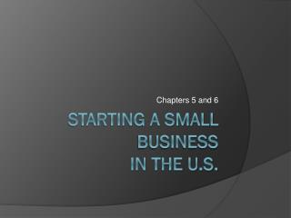 Starting a Small Business  in the U.S.