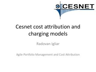 Cesnet  cost attribution and charging models