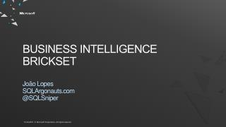 Business Intelligence  BrickSet
