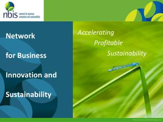 Network  for Business Innovation and Sustainability