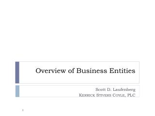 Overview of Business Entities