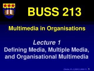 Multimedia in Organisations