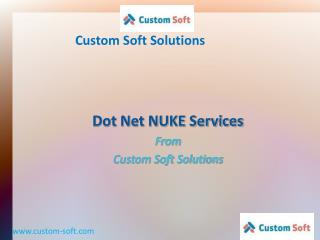 dot net nuke (dnn) services