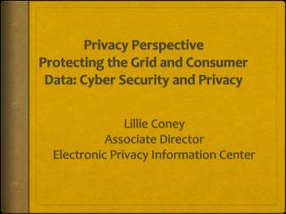 Privacy Perspective Protecting  the Grid and Consumer Data: Cyber Security and Privacy